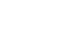 The Wired Rooster Logo